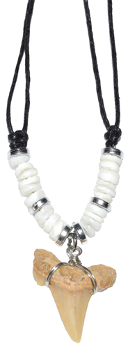 Shark Tooth w/ White Beads