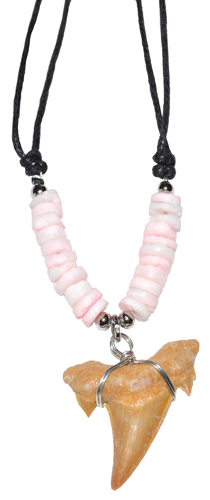 Shark Tooth w/ Pink Beads