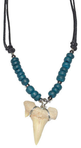 Shark Tooth w/ Teal Beads