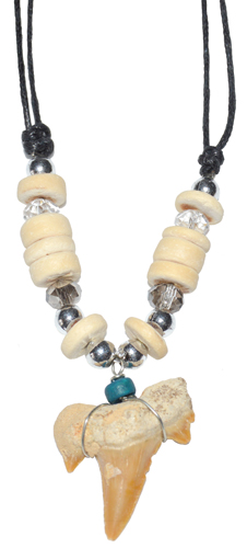 Shark Tooth w/ Cream Beads