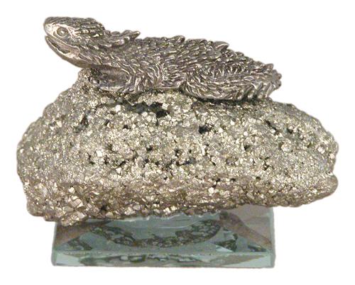 Med. Horny Toad